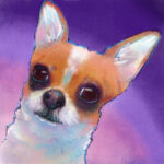 chihuahua-portrait-with-pattern-overlay