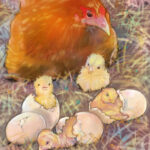 hatching-eggs-1