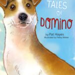 Tales of Domino cover final copy 2